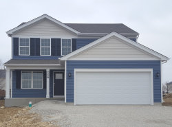Photo of 246 Liszka Lane, OSWEGO, IL 60543 (MLS # 10322310)