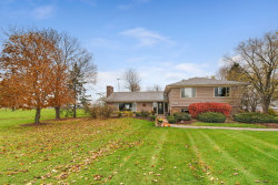 Photo of 2996 Wolf Road, OSWEGO, IL 60543 (MLS # 10328251)