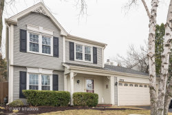 Photo of 170 Rosewood Drive, ROSELLE, IL 60172 (MLS # 10333534)