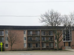 Photo of 1060 N Mill Street, Unit Number 305, NAPERVILLE, IL 60563 (MLS # 10334487)