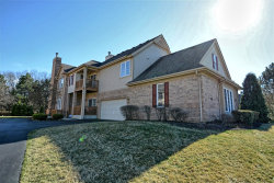 Photo of 4101 Spyglass Circle, Unit Number 4101, PALOS HEIGHTS, IL 60463 (MLS # 10337930)