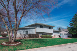 Photo of 5246 Woodland Drive, Unit Number E2, OAK FOREST, IL 60452 (MLS # 10339521)