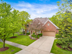 Photo of 919 Rock Spring Road, NAPERVILLE, IL 60565 (MLS # 10342947)