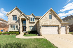 Photo of 1250 W Flamingo Drive, ROSELLE, IL 60172 (MLS # 10343535)
