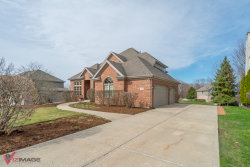 Photo of 21016 Tail Feathers Drive, MOKENA, IL 60448 (MLS # 10343614)