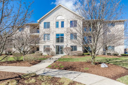 Photo of 6835 Forestview Drive, Unit Number 3D, OAK FOREST, IL 60452 (MLS # 10345380)
