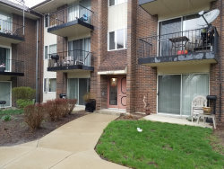 Photo of 5S070 Pebblewood Lane, Unit Number H1, NAPERVILLE, IL 60563 (MLS # 10347751)