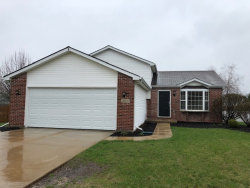 Photo of 1402 Green Trails Drive, PLAINFIELD, IL 60586 (MLS # 10349375)