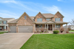 Photo of 25002 Chalk Hill Circle, PLAINFIELD, IL 60544 (MLS # 10349506)