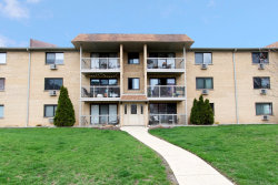 Photo of 249 N Smith Street, Unit Number 3E, PALATINE, IL 60067 (MLS # 10349584)