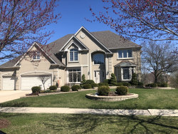 Photo of 4520 Clearwater Lane, NAPERVILLE, IL 60564 (MLS # 10351172)