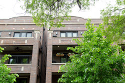 Photo of 3950 N Hoyne Avenue, Unit Number 2S, CHICAGO, IL 60618 (MLS # 10353967)