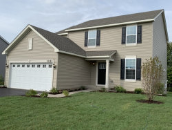 Photo of 3181 Manchester Drive, MONTGOMERY, IL 60538 (MLS # 10354843)