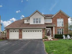 Photo of 26229 Whispering Woods Circle, PLAINFIELD, IL 60585 (MLS # 10357404)