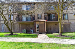Photo of 1673 Ishnala Drive, Unit Number 202, Naperville, IL 60565 (MLS # 10366176)