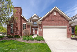 Photo of 13443 Cove Court, PALOS HEIGHTS, IL 60463 (MLS # 10376274)