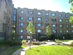 Photo of 5306 N Cumberland Avenue, Unit Number 313-3, CHICAGO, IL 60656 (MLS # 10383049)