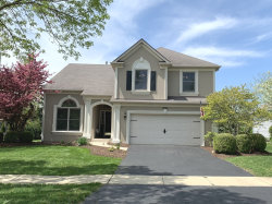 Photo of 4864 Snapjack Circle, NAPERVILLE, IL 60564 (MLS # 10383078)