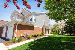 Photo of 221 Mansfield Way, Unit Number 221, ROSELLE, IL 60172 (MLS # 10385872)