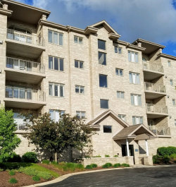 Photo of 11110 Waters Edge Drive, Unit Number 1C, ORLAND PARK, IL 60467 (MLS # 10387489)