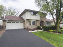 Photo of 17325 84th Avenue, TINLEY PARK, IL 60477 (MLS # 10387807)