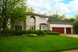 Photo of 951 E Amberwood Circle, NAPERVILLE, IL 60563 (MLS # 10389858)