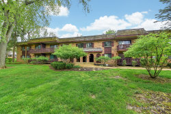 Photo of 7920 Woodglen Lane, Unit Number 203, DOWNERS GROVE, IL 60516 (MLS # 10389878)