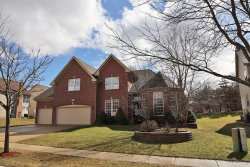 Photo of 1 Cranberry Court, STREAMWOOD, IL 60107 (MLS # 10391059)