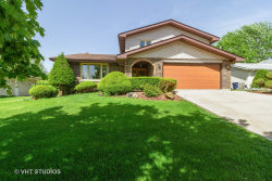 Photo of 8438 Hollywood Drive, ORLAND PARK, IL 60462 (MLS # 10391994)