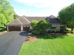Photo of 10522 Royal Porthcawl Drive, NAPERVILLE, IL 60564 (MLS # 10392450)