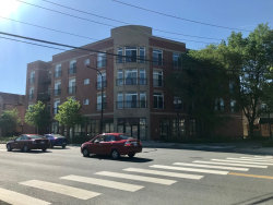 Photo of 2520 S Oakley Avenue, Unit Number 204, CHICAGO, IL 60608 (MLS # 10392490)