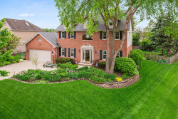 Photo of 13720 Spring Lane, ORLAND PARK, IL 60467 (MLS # 10392650)