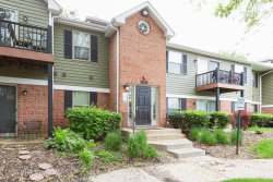 Photo of 1521 Raymond Drive, Unit Number 104, NAPERVILLE, IL 60563 (MLS # 10395794)