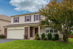 Photo of 2993 Stirling Court, MONTGOMERY, IL 60538 (MLS # 10403060)