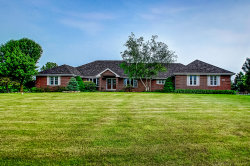Photo of 7251 W Ethan Court, MONEE, IL 60449 (MLS # 10405257)