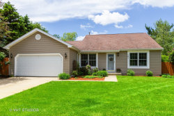 Photo of 101 S Creekside Trail, MCHENRY, IL 60050 (MLS # 10409585)