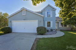 Photo of 202 S Driftwood Trail, MCHENRY, IL 60050 (MLS # 10409877)