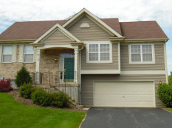 Photo of 518 Lincoln Station Drive, OSWEGO, IL 60543 (MLS # 10411072)