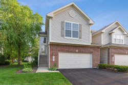 Photo of 161 Fountain Grass Circle, BARTLETT, IL 60103 (MLS # 10415386)
