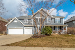 Photo of 878 W Lukas Avenue, PALATINE, IL 60067 (MLS # 10415449)