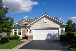 Photo of 2805 Cascade Falls Circle, ELGIN, IL 60124 (MLS # 10416824)