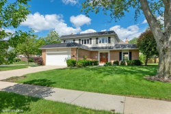 Photo of 1125 N Topanga Drive, PALATINE, IL 60067 (MLS # 10417281)