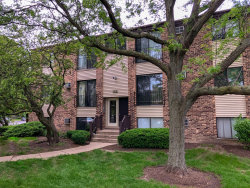 Photo of 148 Dunteman Drive, Unit Number 101, GLENDALE HEIGHTS, IL 60139 (MLS # 10418424)