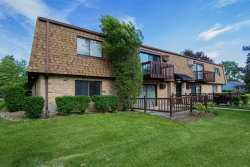 Photo of 11608 Roberts Street, Unit Number 4, MOKENA, IL 60448 (MLS # 10419335)