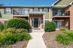 Photo of 1569 Raymond Drive, Unit Number 101, NAPERVILLE, IL 60563 (MLS # 10422609)