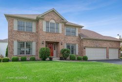 Photo of 24265 Eagle Chase Drive, PLAINFIELD, IL 60544 (MLS # 10424124)