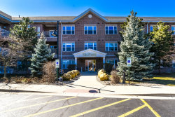 Photo of 10 N Gilbert Street, Unit Number 205, SOUTH ELGIN, IL 60177 (MLS # 10425479)