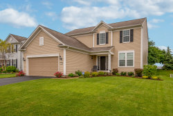 Photo of 161 Chapin Way, OSWEGO, IL 60543 (MLS # 10426210)