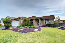 Photo of 25822 S Hoover Court, MONEE, IL 60449 (MLS # 10433753)
