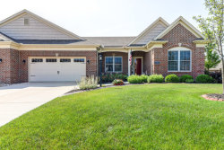 Photo of 1702 Whisper Meadow Lane, Unit Number 1702, MAHOMET, IL 61853 (MLS # 10434961)